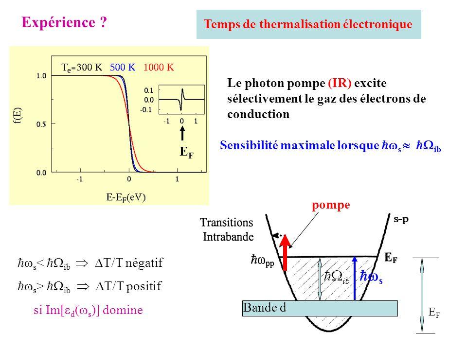 Expérience s Temps de thermalisation électronique