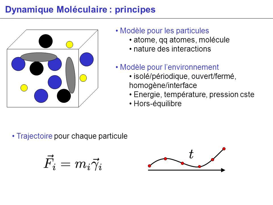Dynamique Moléculaire : principes