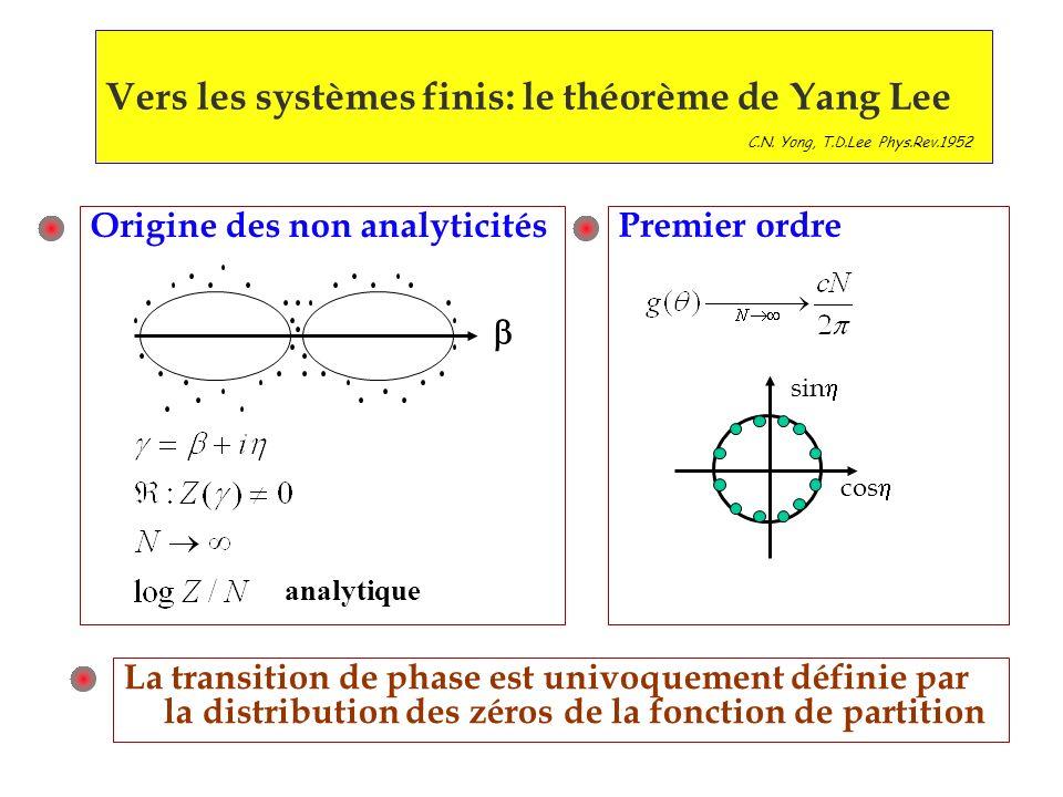 Vers les systèmes finis: le théorème de Yang Lee