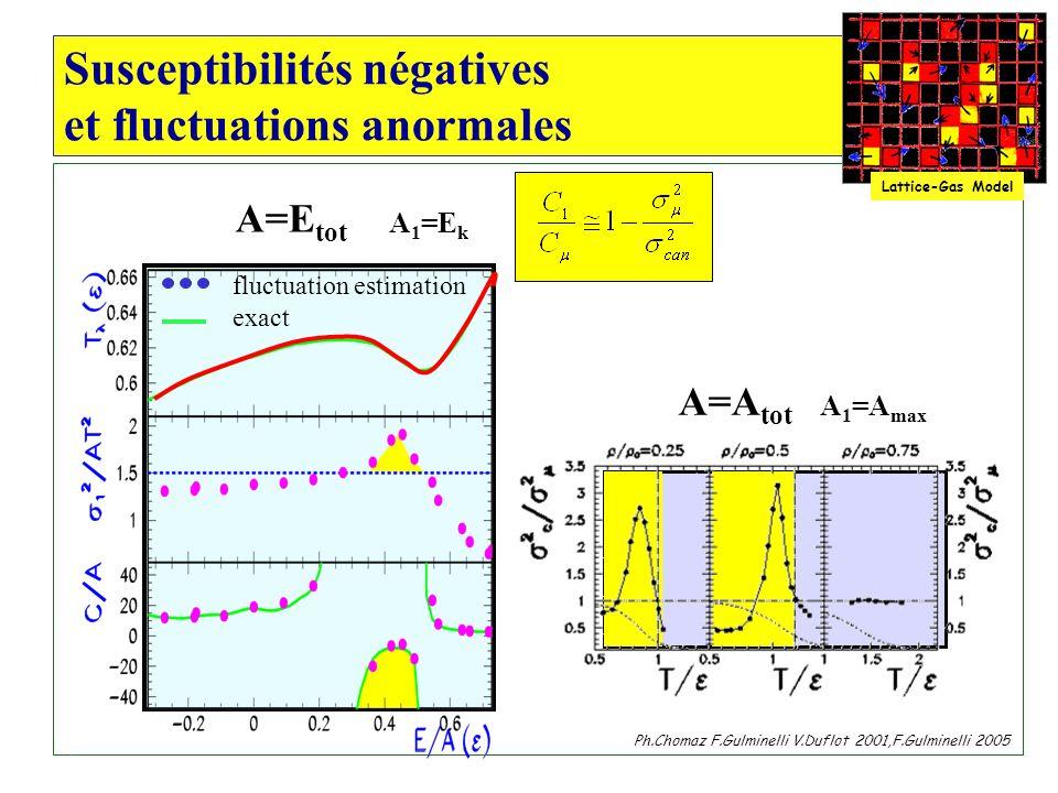 Susceptibilités négatives et fluctuations anormales