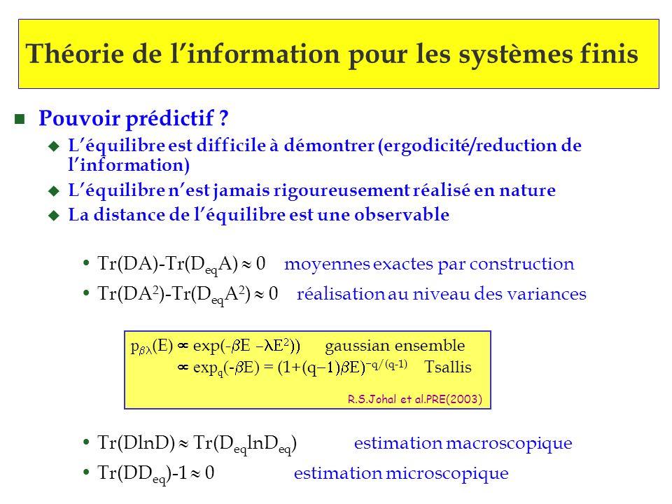 Théorie de l'information pour les systèmes finis