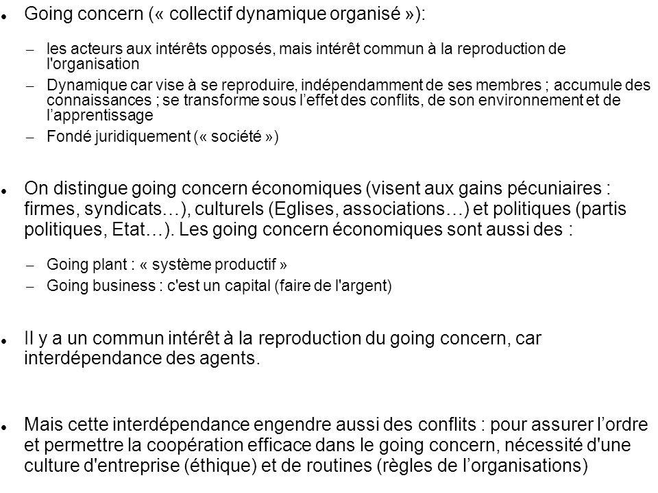 Going concern (« collectif dynamique organisé »):