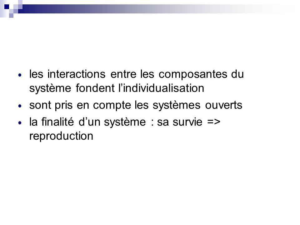 les interactions entre les composantes du système fondent l'individualisation