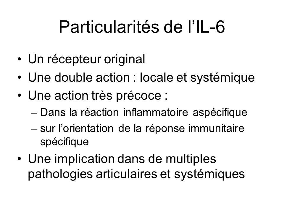 Particularités de l'IL-6