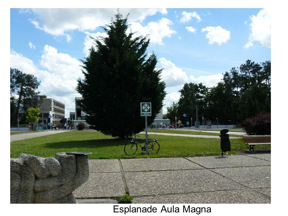 Esplanade Aula Magna
