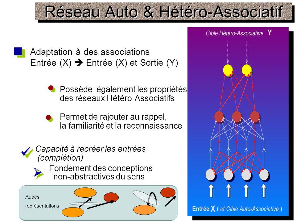 Réseau Auto & Hétéro-Associatif