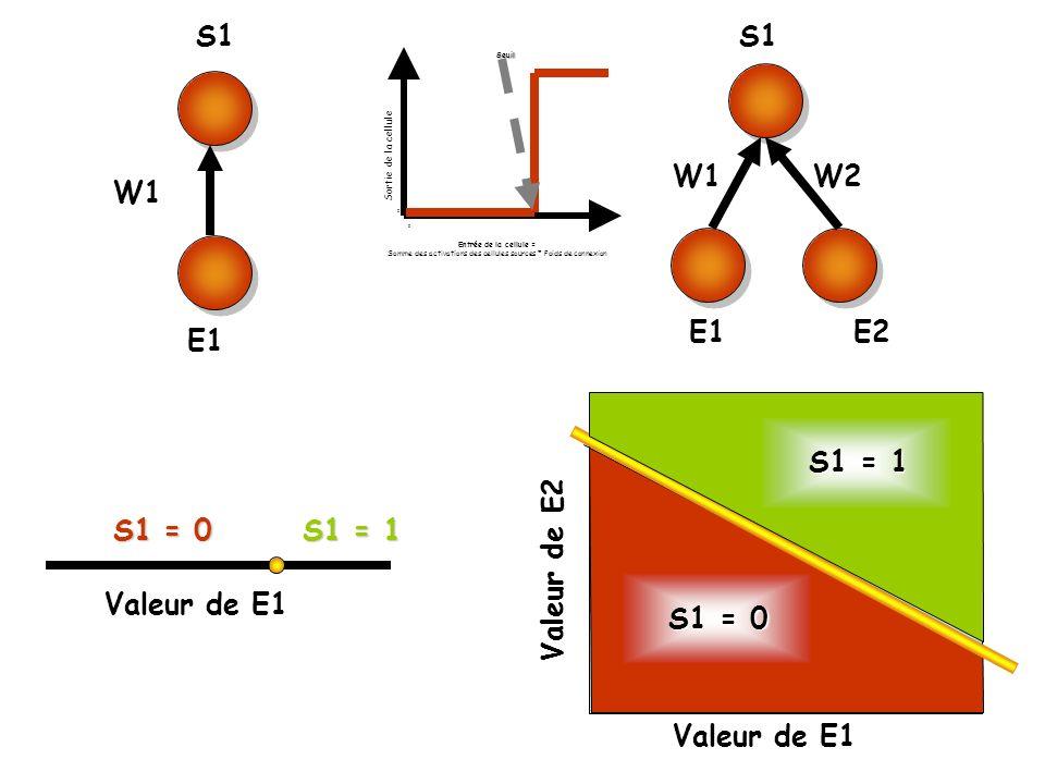 Somme des activations des cellules sources * Poids de connexion