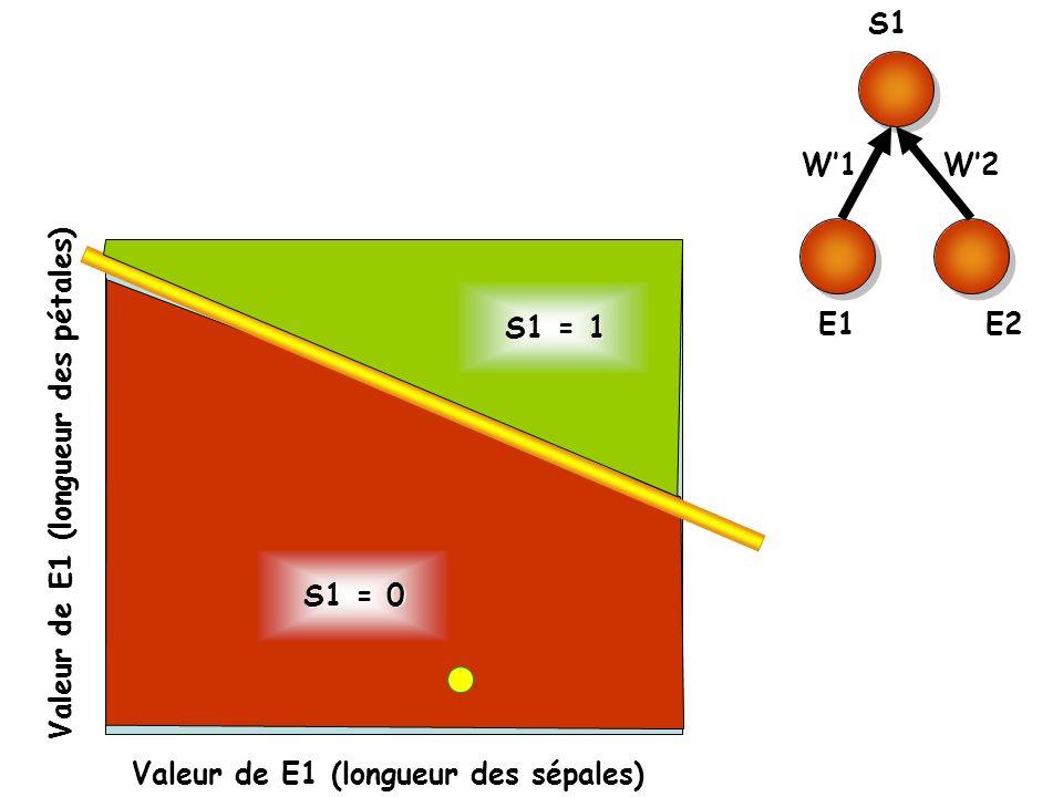 S1 E1. E2. W'1. W'2. S1 = 1. Valeur de E1 (longueur des pétales) S1 = 0.