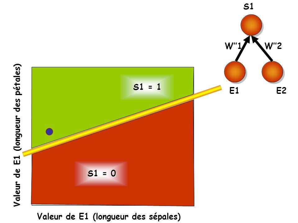 S1 E1. E2. W''1. W''2. S1 = 1. Valeur de E1 (longueur des pétales) S1 = 0.