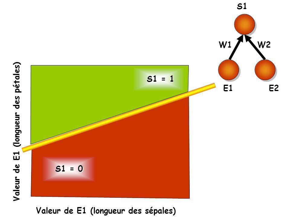 S1 E1. E2. W1. W2. S1 = 1. Valeur de E1 (longueur des pétales) S1 = 0.