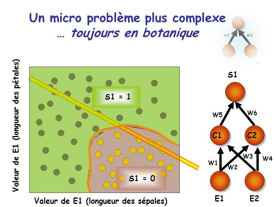 Un micro problème plus complexe … toujours en botanique