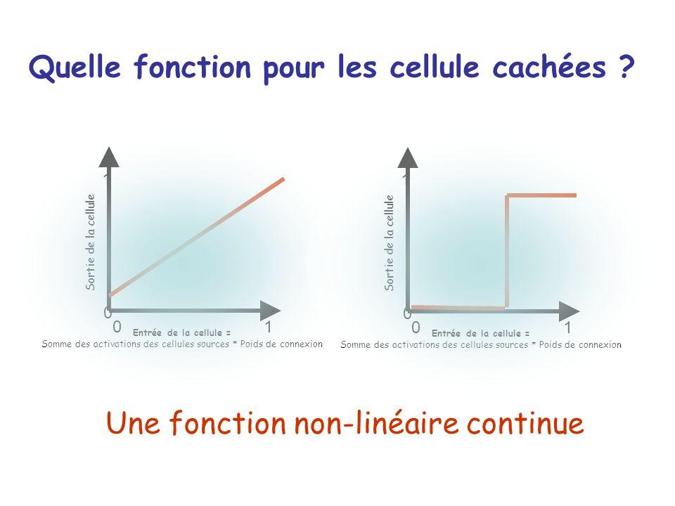 Quelle fonction pour les cellule cachées