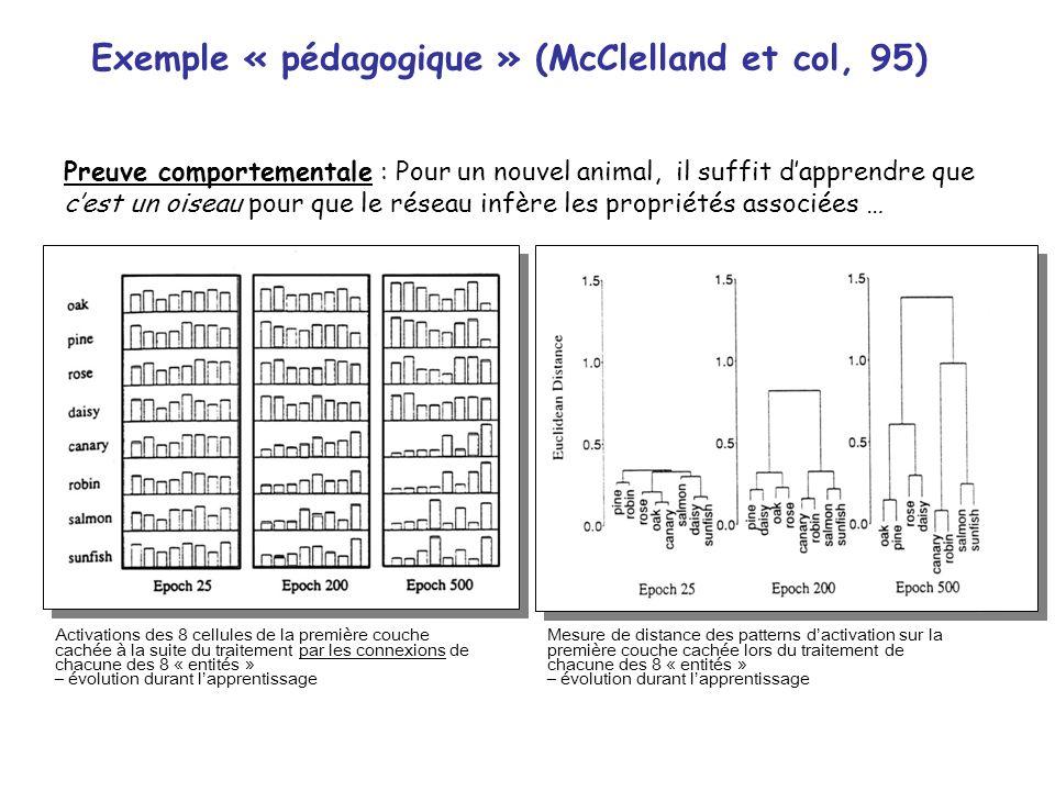 Exemple « pédagogique » (McClelland et col, 95)