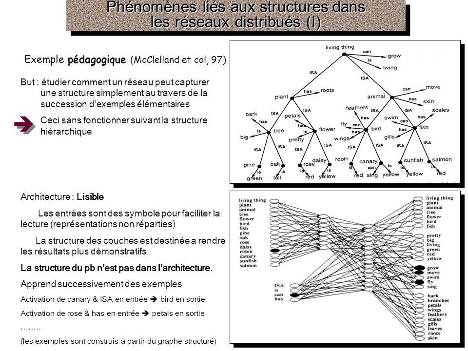 Phénomènes liés aux structures dans les réseaux distribués (I)