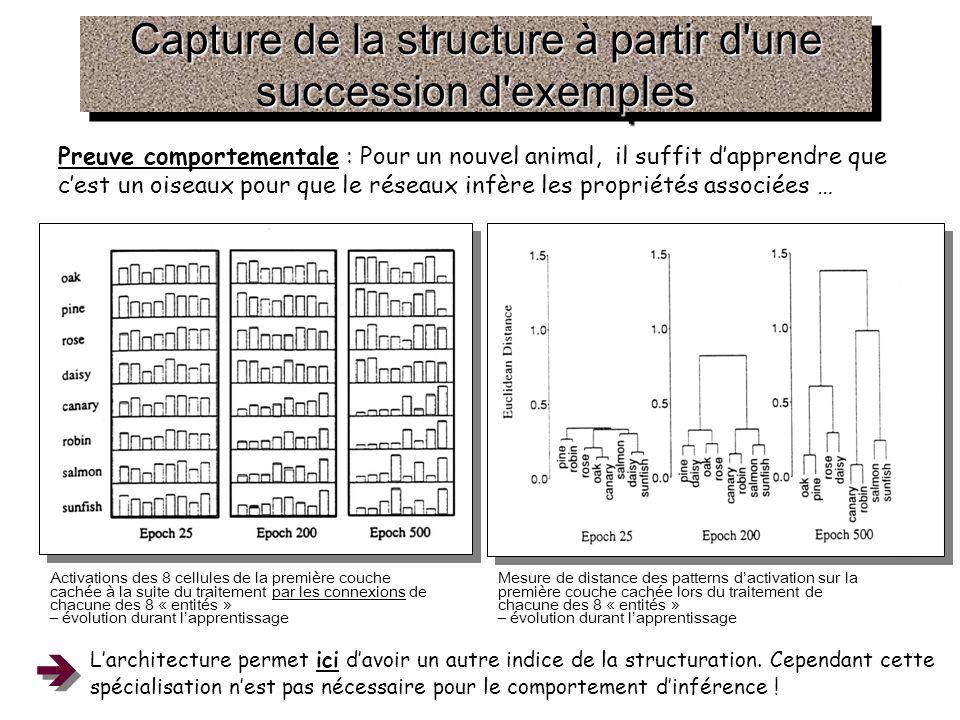 Capture de la structure à partir d une succession d exemples