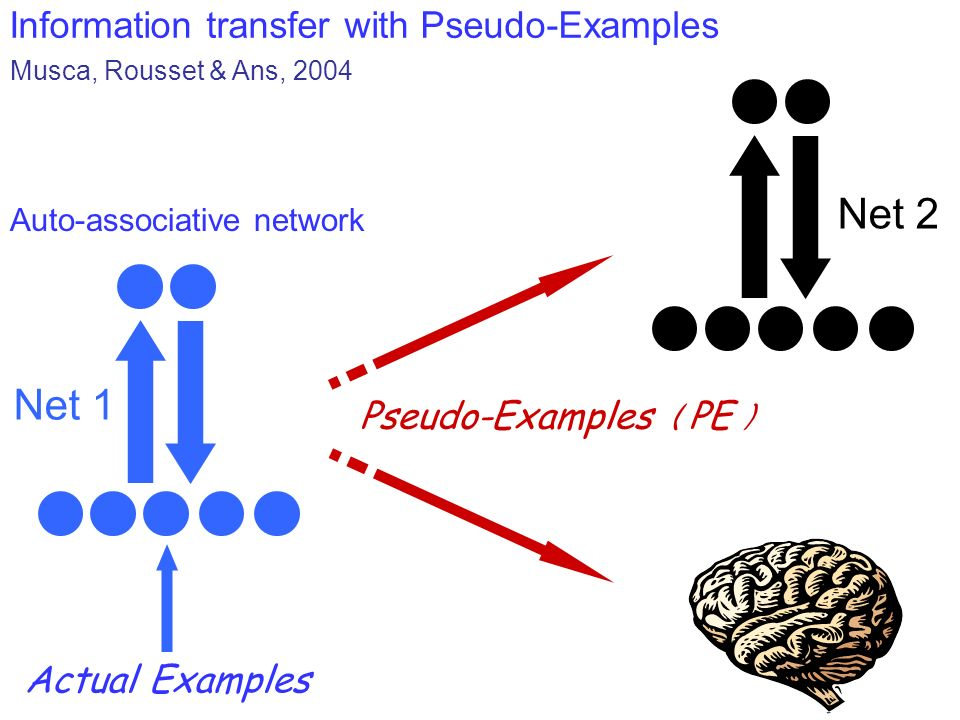 Net 2 Net 1 Information transfer with Pseudo-Examples
