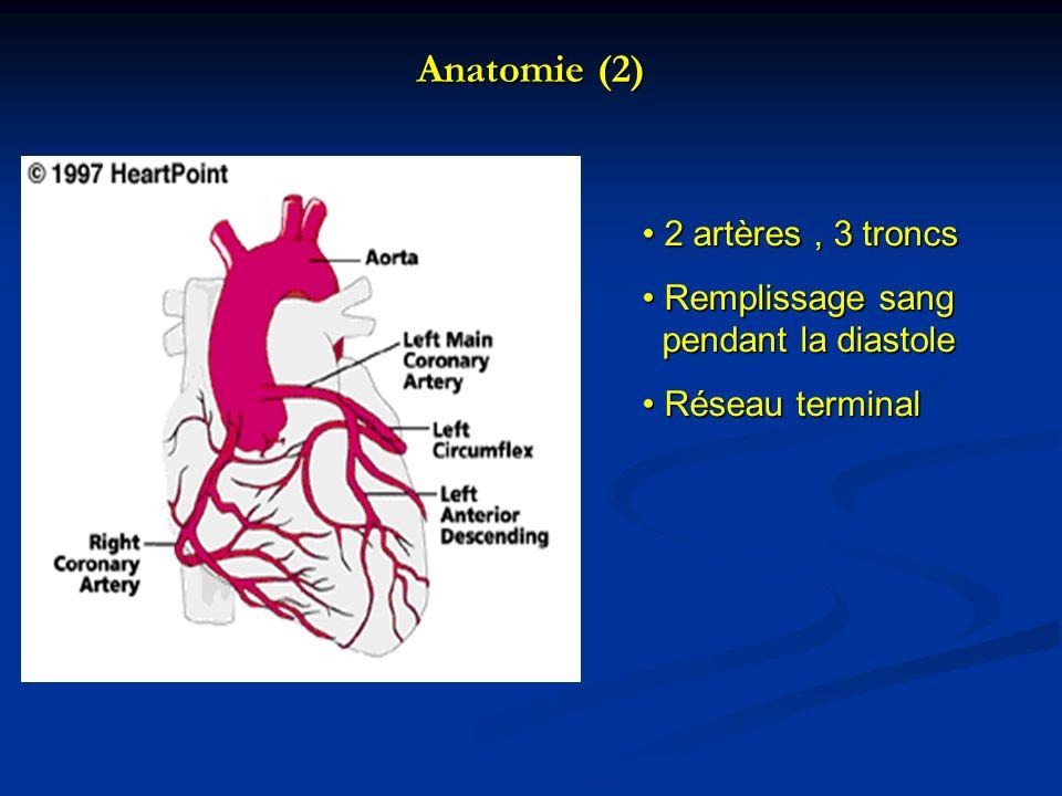 Anatomie (2) 2 artères , 3 troncs Remplissage sang pendant la diastole