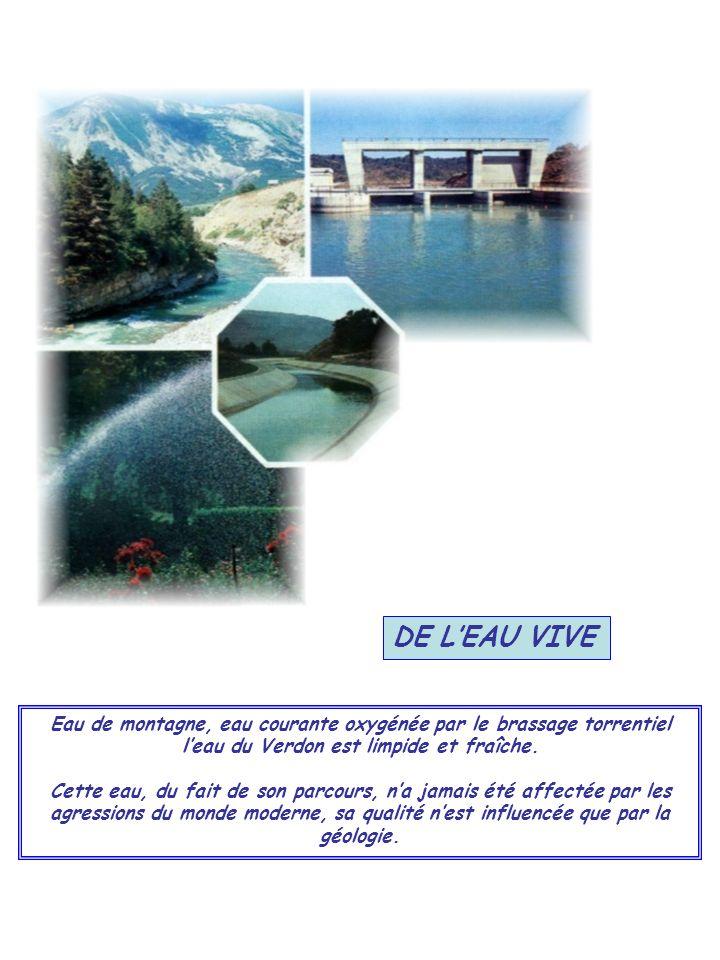DE L'EAU VIVE Eau de montagne, eau courante oxygénée par le brassage torrentiel l'eau du Verdon est limpide et fraîche.