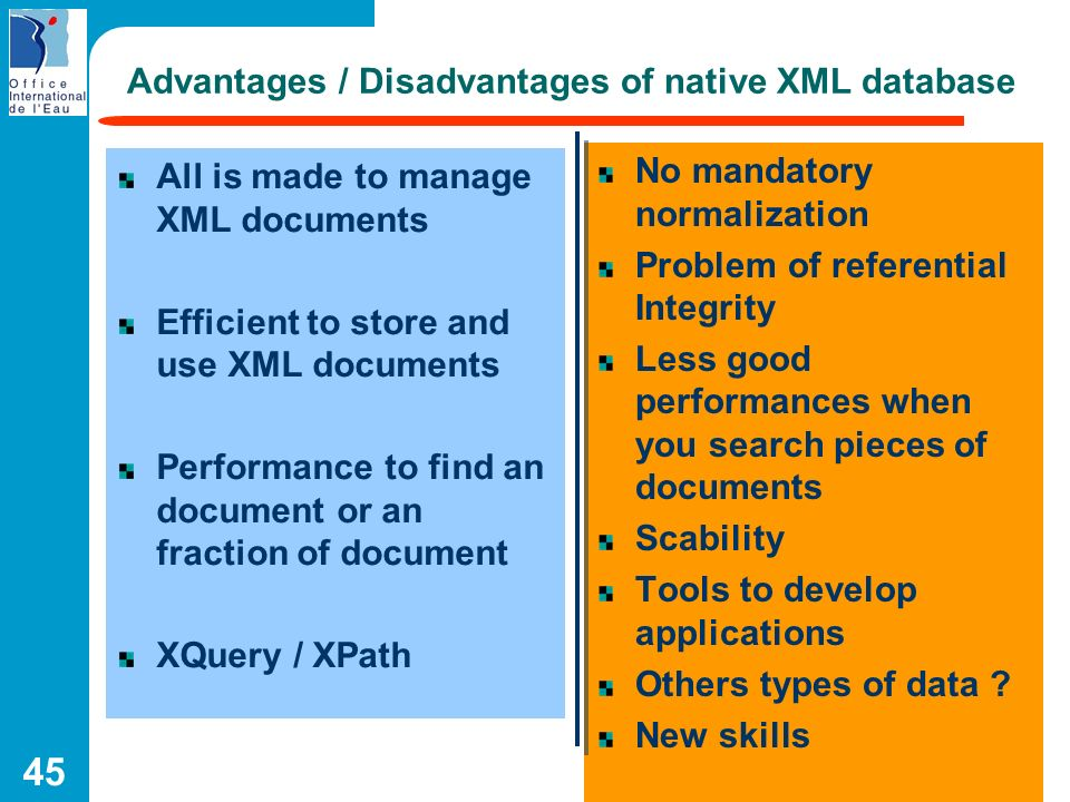 Advantages / Disadvantages of native XML database