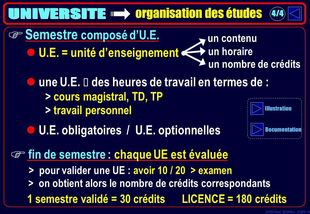 F F UNIVERSITE Semestre composé d'U.E. organisation des études
