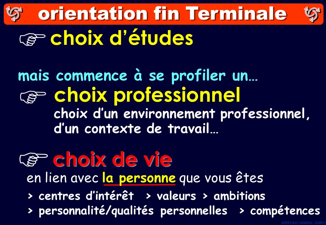 orientation fin Terminale