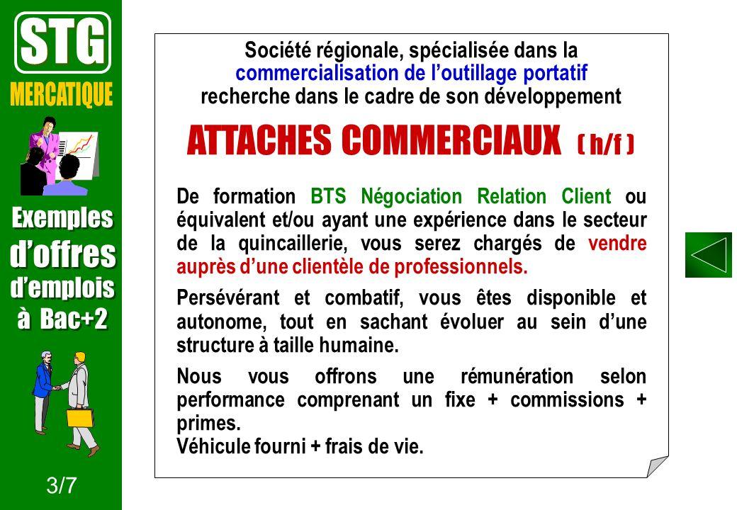 STG ATTACHES COMMERCIAUX ( h/f ) MERCATIQUE d'offres Exemples