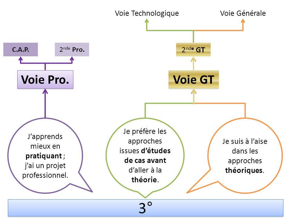 3° Voie Pro. Voie GT Voie Technologique Voie Générale 2nde GT
