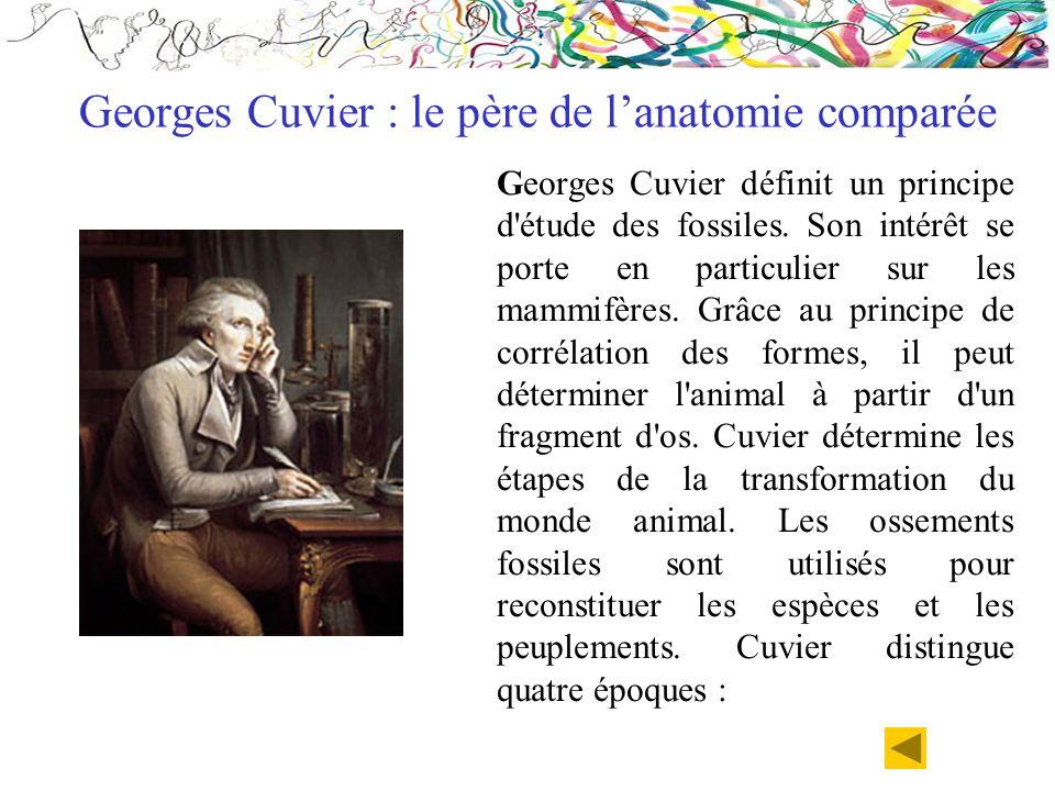 Georges Cuvier : le père de l'anatomie comparée