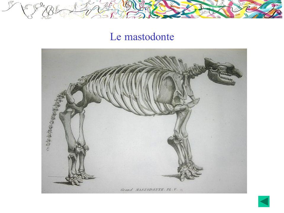 Le mastodonte