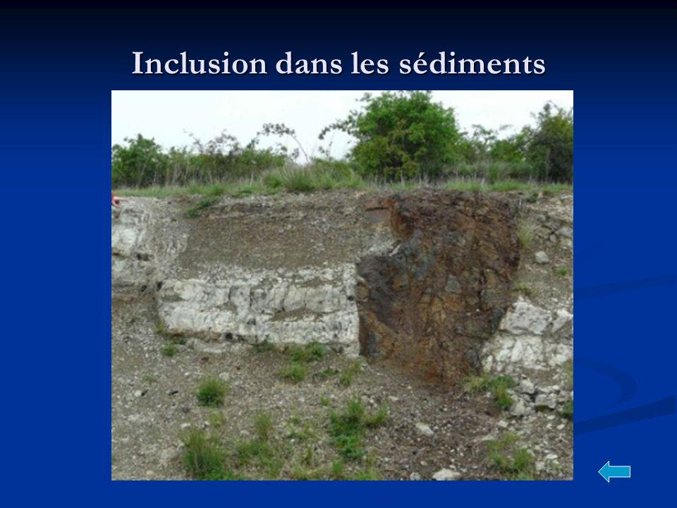 Inclusion dans les sédiments