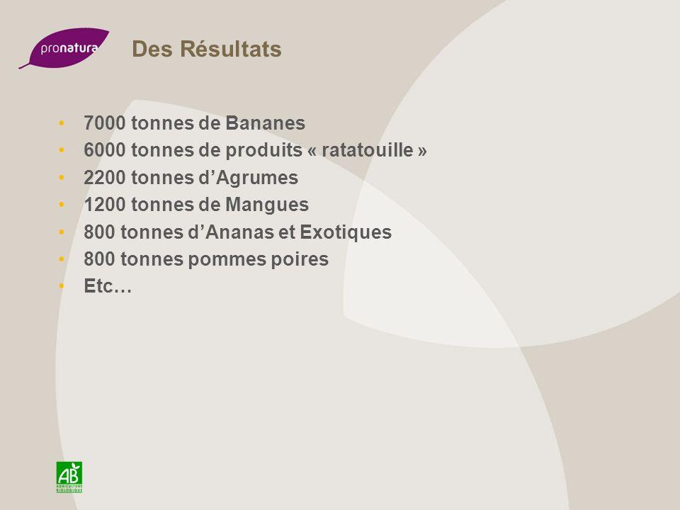Des Résultats 7000 tonnes de Bananes