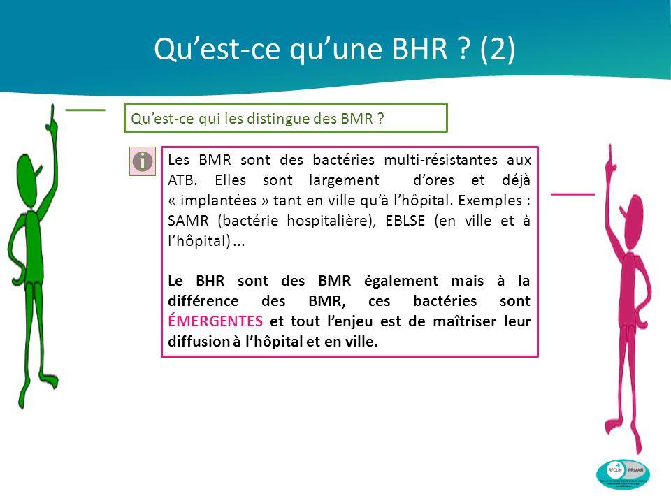 Qu'est-ce qu'une BHR (2)