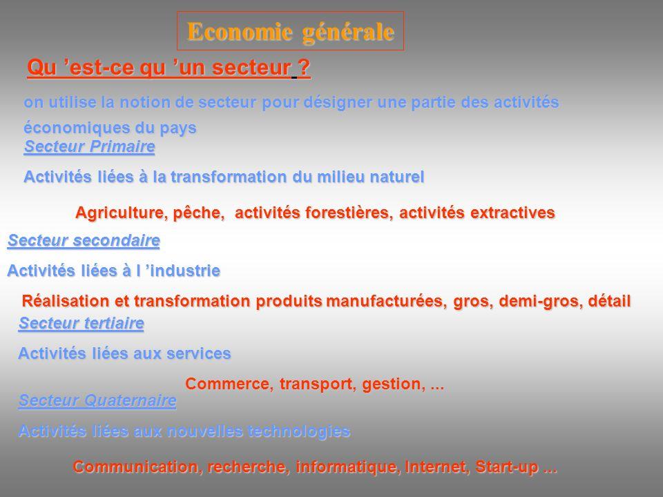 Economie générale Qu 'est-ce qu 'un secteur