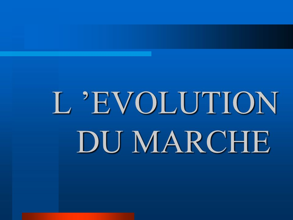 L 'EVOLUTION DU MARCHE