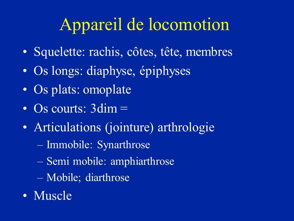 Appareil de locomotion