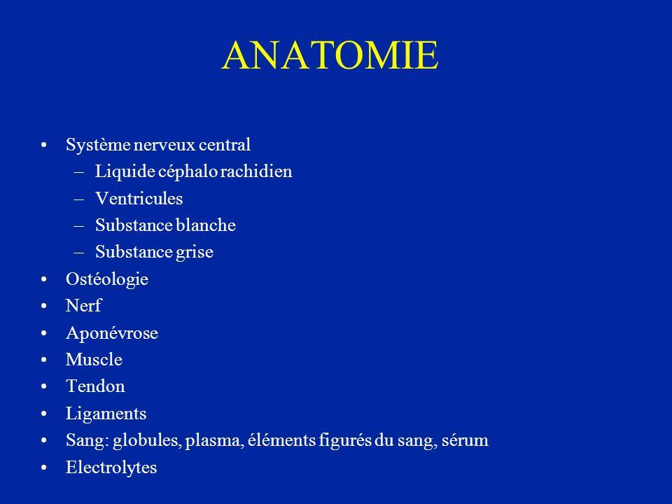 ANATOMIE Système nerveux central Liquide céphalo rachidien Ventricules
