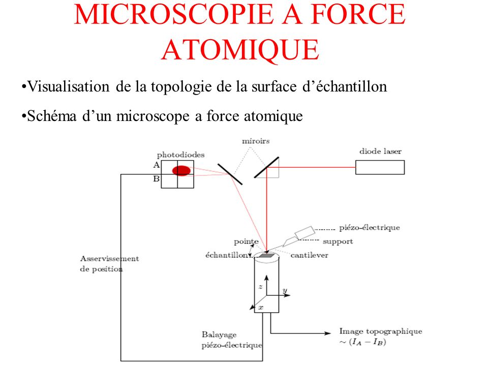 MICROSCOPIE A FORCE ATOMIQUE