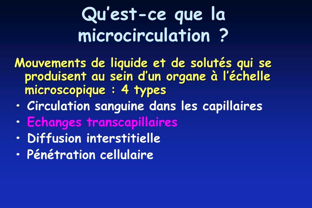 Qu'est-ce que la microcirculation