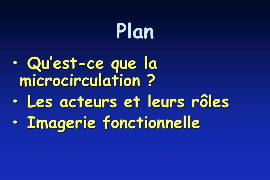 Plan • Qu'est-ce que la microcirculation