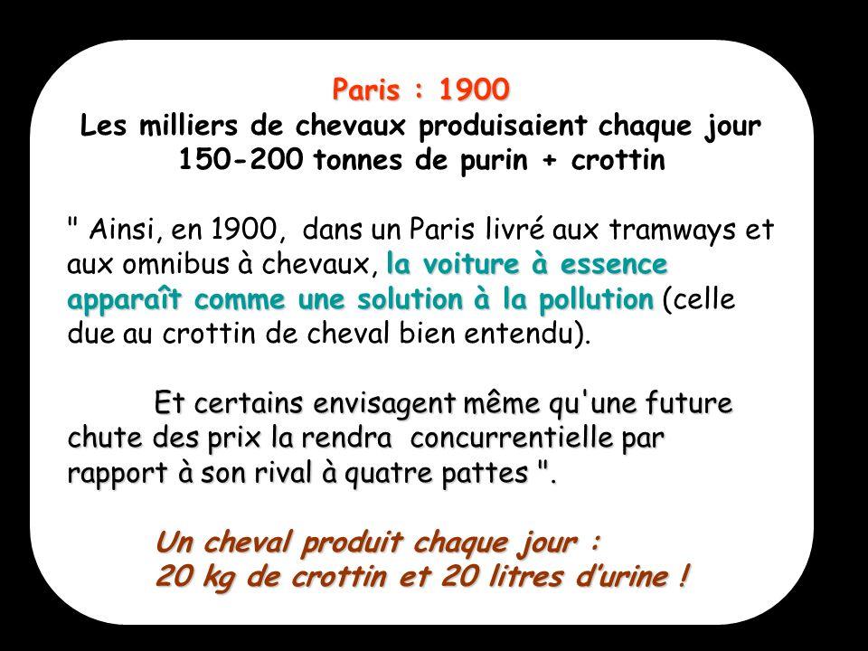 Paris : 1900 Les milliers de chevaux produisaient chaque jour 150-200 tonnes de purin + crottin.