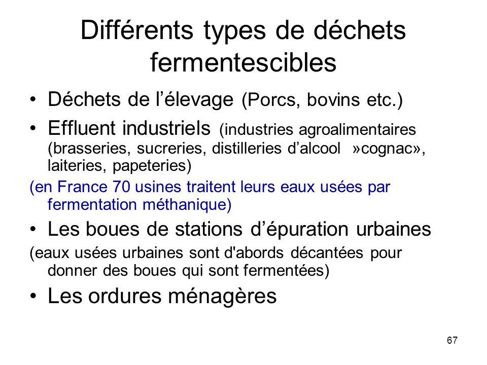 Différents types de déchets fermentescibles