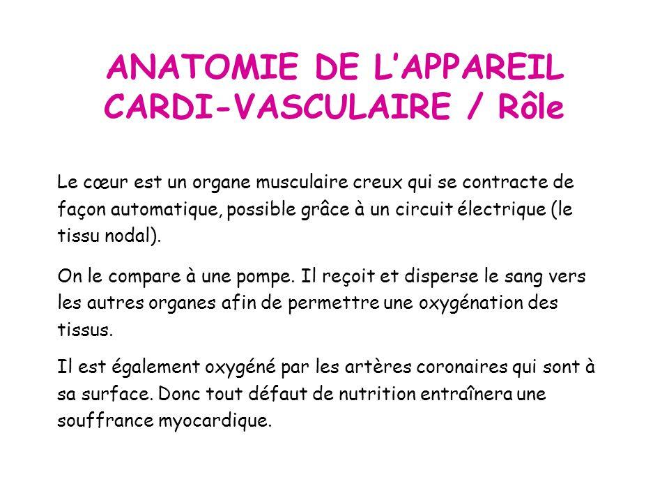 ANATOMIE DE L'APPAREIL CARDI-VASCULAIRE / Rôle
