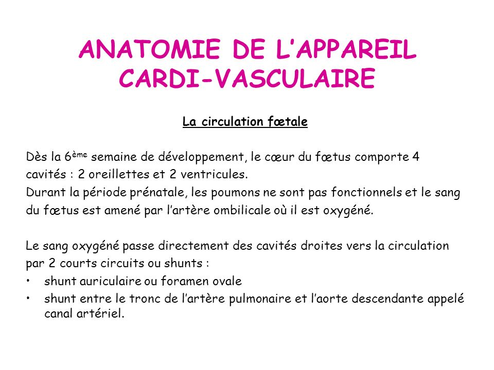 ANATOMIE DE L'APPAREIL CARDI-VASCULAIRE