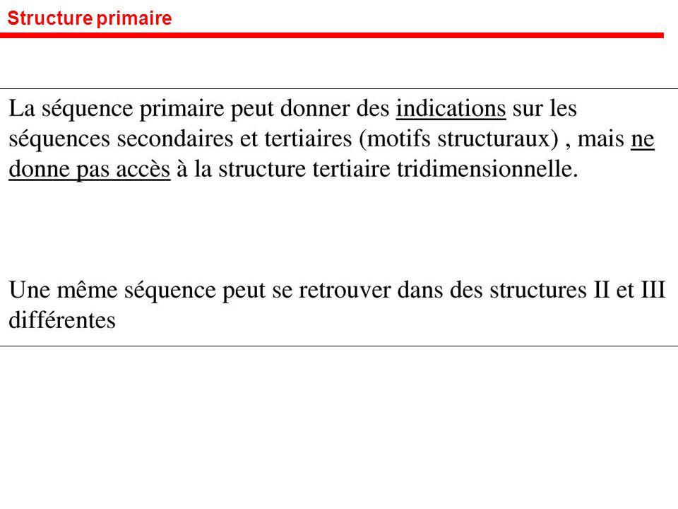 Structure primaire