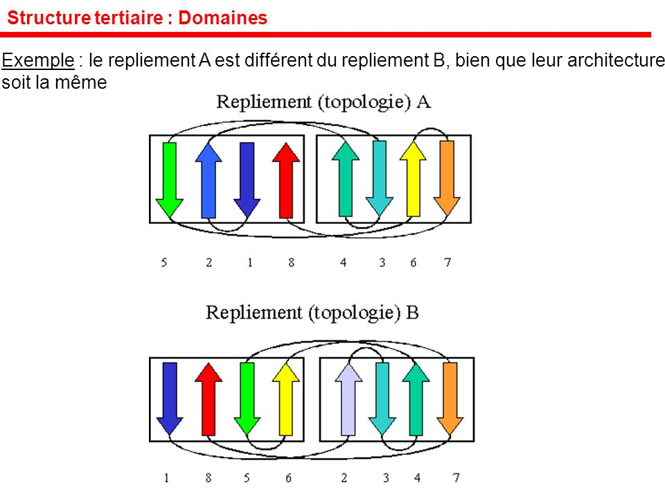 Structure tertiaire : Domaines