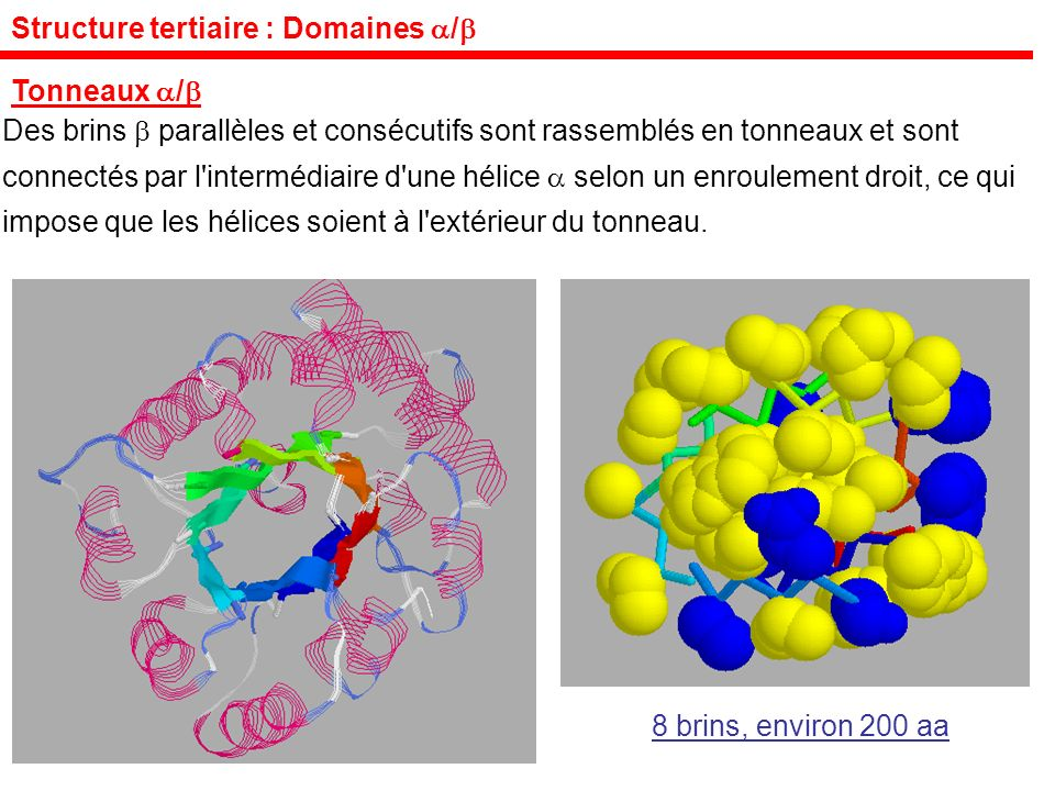 Structure tertiaire : Domaines /