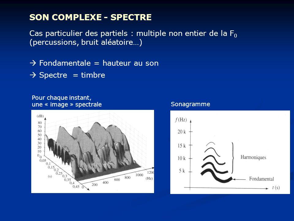 SON COMPLEXE - SPECTRE Cas particulier des partiels : multiple non entier de la F0 (percussions, bruit aléatoire…)