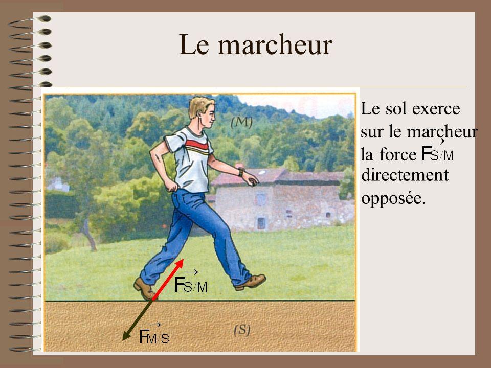 Le marcheur Le sol exerce sur le marcheur la force