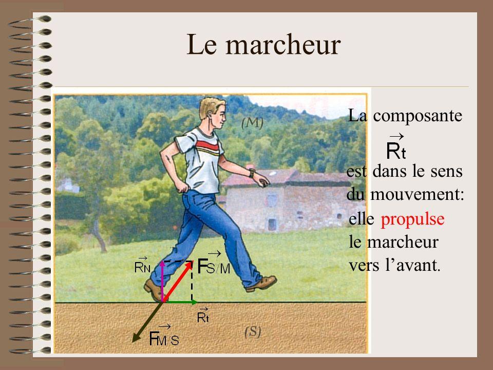 Le marcheur La composante est dans le sens du mouvement: