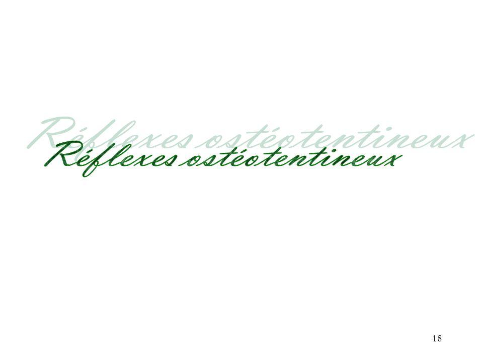 Réflexes ostéotentineux